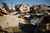 Homes destroyed by Hurricane Sandy are seen, one month after the storm made landfall, in Mantoloking, New Jersey, November 29, 2012. REUTERS/Andrew Burton