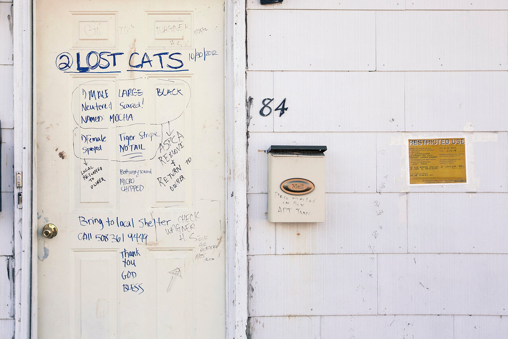 Description of . A series of messages relating to a resident's two cats lost during the storm surge of superstorm Sandy are scribbled on a door in the Staten Island borough neighborhood of Oakwood in New York November 28, 2012.  REUTERS/Lucas Jackson