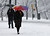People walk through Central Park in the snow in New York March 8, 2013. REUTERS/Shannon Stapleton