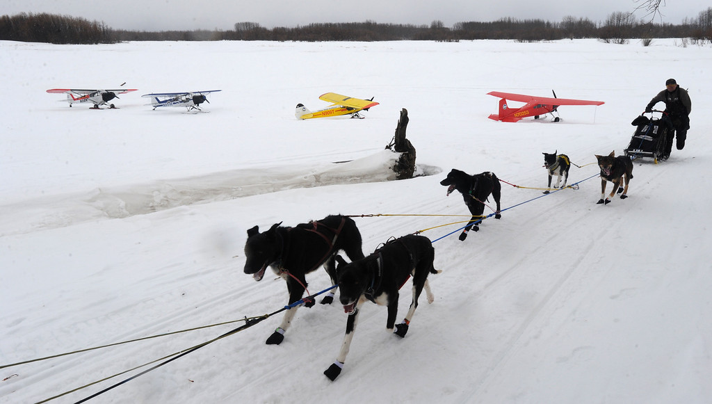 Description of . Musher Ken Anderson arrives at the checkpoint in Anvik, Alaska, during the Iditarod Trail Sled Dog Race on Friday, March 8, 2013. (AP Photo/Anchorage Daily News, Bill Roth)
