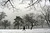 A woman walks through a snow-shrouded park on March 8, 2013 in the Brooklyn borough of New York City. (Photo by Spencer Platt/Getty Images)