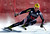 Ivica Kostelic of Croatia skis past a gate in the men's World Cup downhill ski race in Beaver Creek, Colorado, November 30, 2012. Kostelic finished 20th in the race. REUTERS/Mike Segar