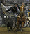 DENVER, CO- JANUARY 27:   Jeremiah Peek of Pueblo, Colorado ropes a calf during the tie down roping event in the rodeo.