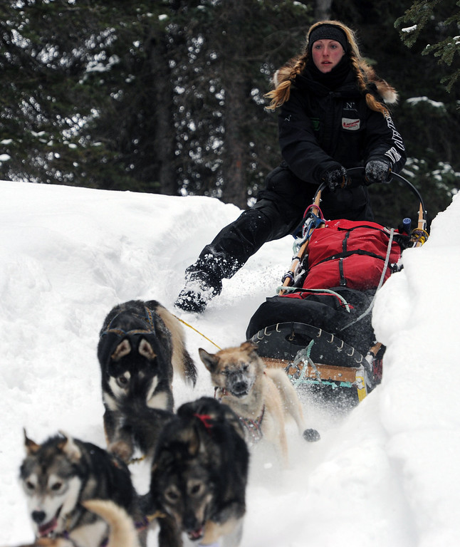 Description of . Musher Anna Berington negotiates a steep drop off in the trail after departing the Finger Lake checkpoint in Alaska during the Iditarod Trail Sled Dog Race on Monday, March 4, 2013. (AP Photo/The Anchorage Daily News, Bill Roth)