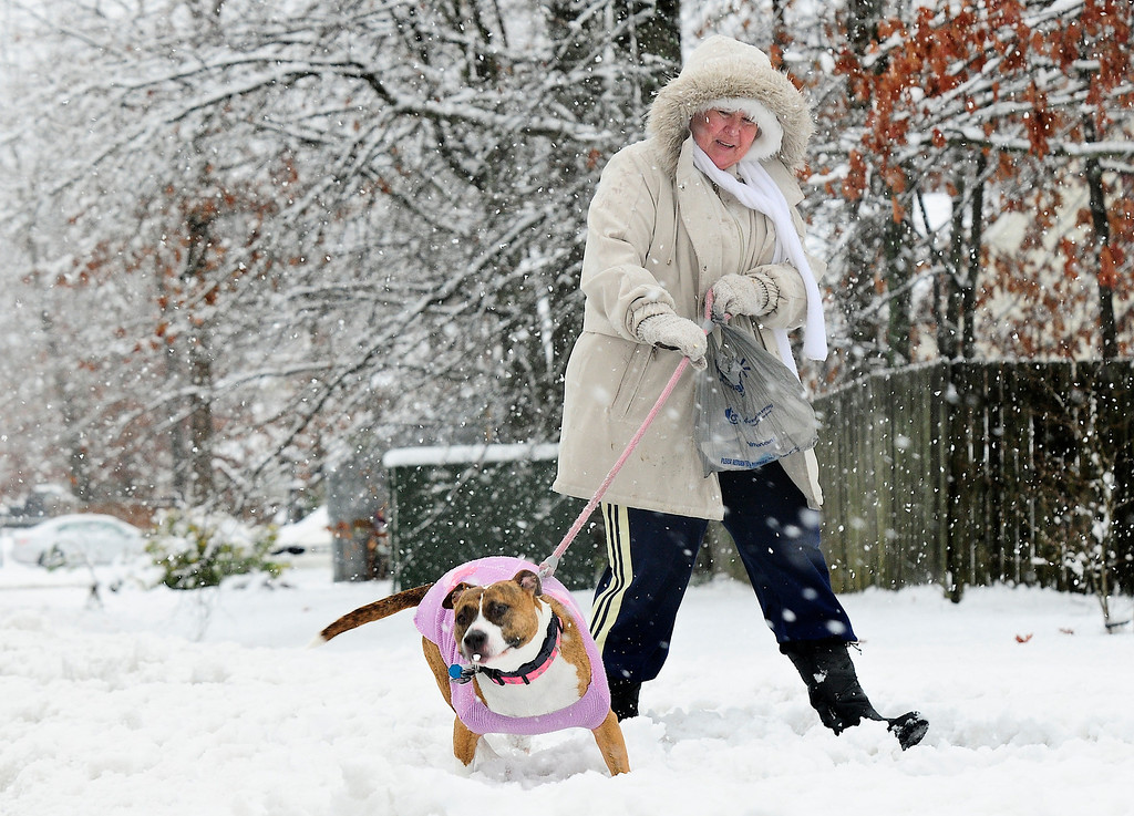 Description of . Patty Hoskin takes her dog, Sandy Sue, for a walk along Leavells Crossing Drive in Fredericksburg, Va., during a steady snowfall on Wednesday, March 6, 2013.  Gov. Bob McDonnell declared a state of emergency Wednesday as up to 20 inches of snow piled up in parts of central and western Virginia.  (AP Photo/The Free Lance-Star, Dave Ellis)