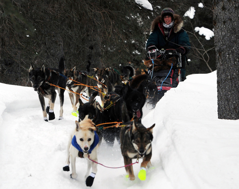 Description of . Jodi Bailey drives her dog team out of the Finger Lake checkpoint in Alaska during the Iditarod Trail Sled Dog Race on Monday, March 4, 2013. (AP Photo/The Anchorage Daily News, Bill Roth)
