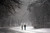 People walk through a snow-shrouded park on March 8, 2013 in the Brooklyn borough of New York City.  (Photo by Spencer Platt/Getty Images)