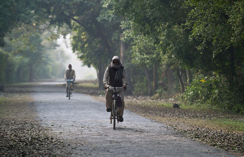 Description of . Indian villagers ride their cycles through the forest near the village of Barahpur in Bijnor District some 120kms north-east of New Delhi on February 2, 2014.  Since December 29, 2013, the same tiger is believed to have killed eight people living near the national park which covers 521 square kilometers in the northern states of Uttar Pradesh and Uttarakhand.  PRAKASH SINGH/AFP/Getty Images