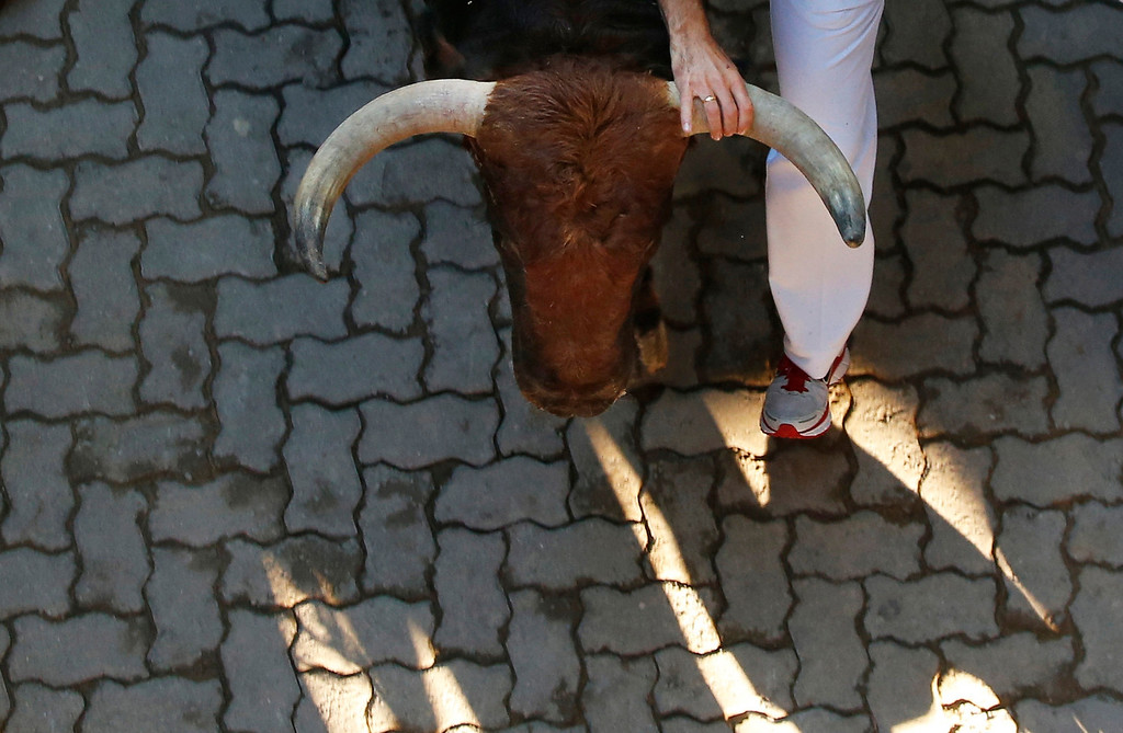 Description of . A runner grabs the horn of a Victoriano del Rio fighting bull as they sprint at the entrance to the bullring during the sixth running of the bulls of the San Fermin festival in Pamplona July 12, 2012. Several runners suffered light injuries in the fastest run (two minutes and twenty seconds) so far in this festival, according to local media. REUTERS/Susana Vera