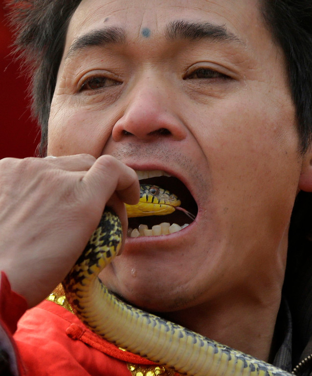 Description of . A performer prepares to insert the head of a live snake into his mouth during a performance at the Ditan Temple Fair celebrating the Chinese Lunar New Year in Beijing February 11, 2013. REUTERS/Jason Lee