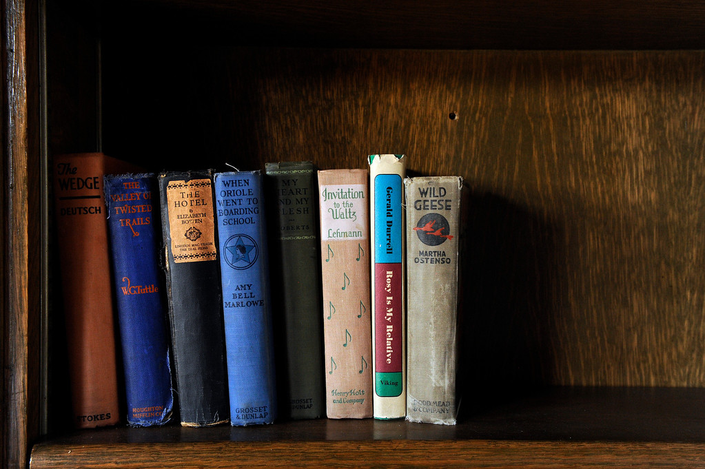 Description of . PINE, CO - APRIL 18: Books found in a box on the property sit on a shelf at Baehrden Lodge on April 18, 2014, in Pine, Colorado. (Photo by Anya Semenoff/The Denver Post)