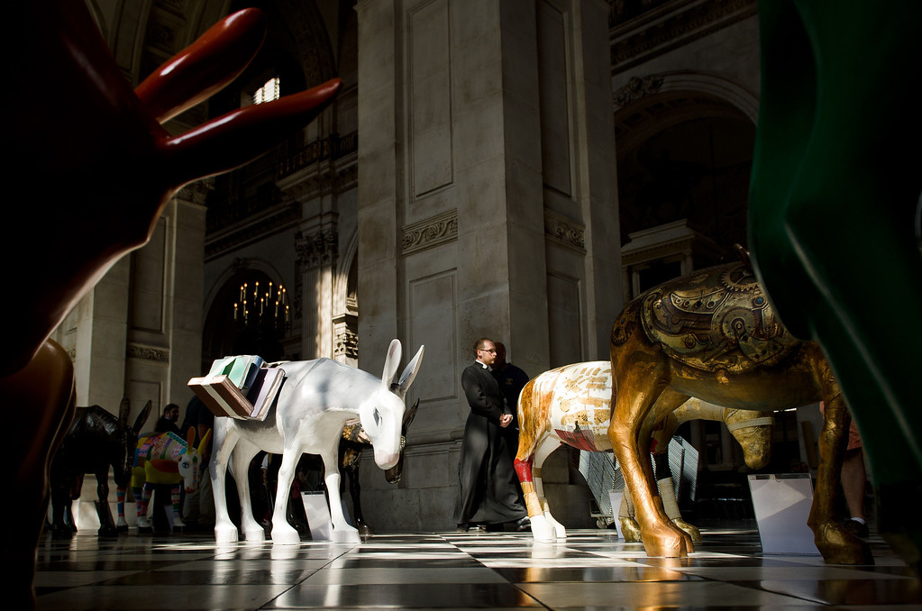 . A member of the clergy (C) walks past a selection of the 25 life-size painted donkeys, created by Egyptian and Western artists, as they go on display in St Paul\'s Cathedral in London on August 30, 2013.    AFP PHOTO / LEON NEAL/AFP/Getty Images