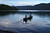 Montana # 8. 