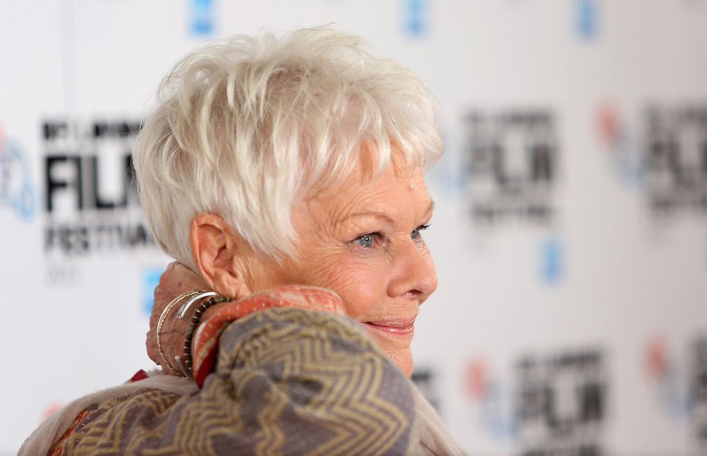 ". 2014 Academy Award Nominee for Best Actress in a Leading Role: Dame Judi Dench in ""Philomena.\"" (Photo by Tim P. Whitby/Getty Images for BFI)"