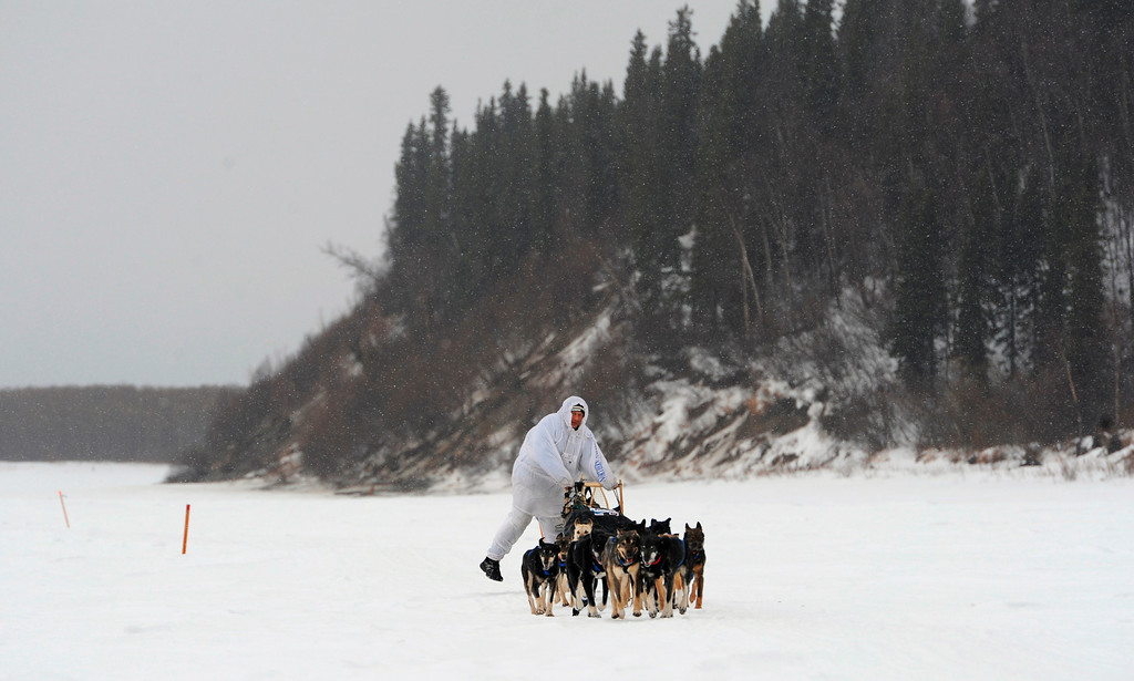 Description of . Four-time Iditarod champion Martin Buser drives his dog team up the Yukon River after leaving the checkpoint in Anvik, Alaska, on Friday, March 8, 2013, during the Iditarod Trail Sled Dog Race. (AP Photo/Anchorage Daily News, Bill Roth)