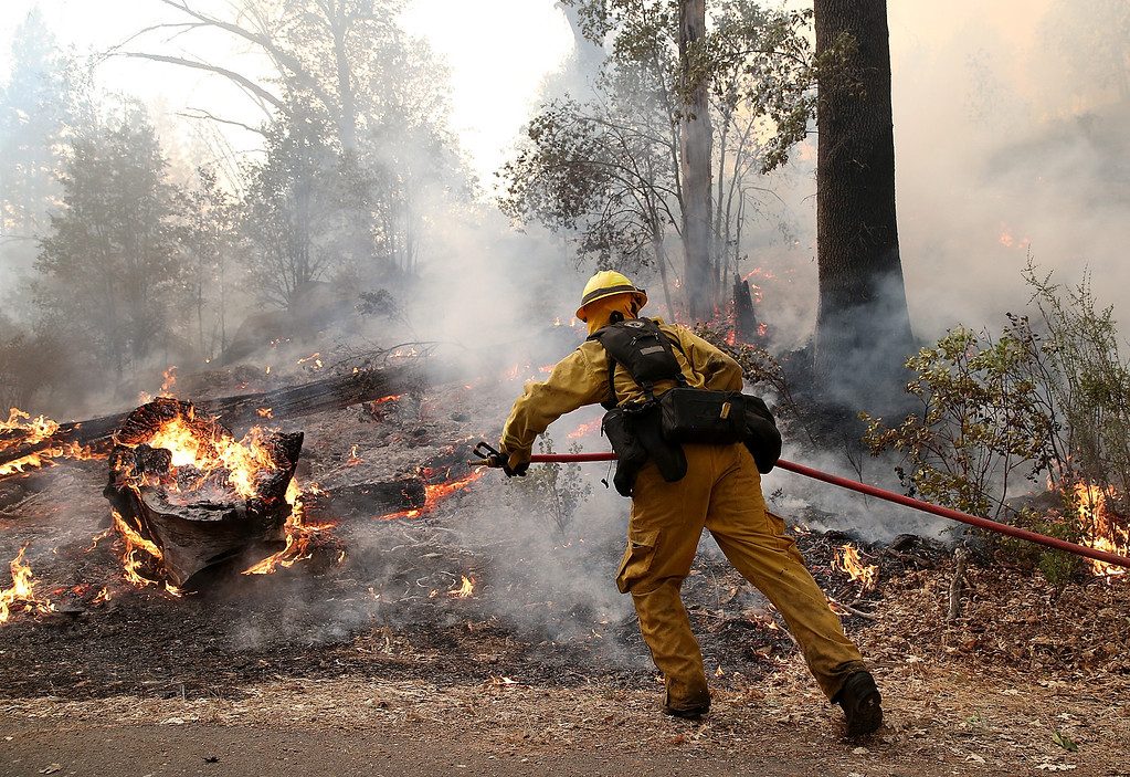 Description of . GROVELAND, CA - AUGUST 21:  A firefighter from Ebbetts Pass Fire District uses a hose to cool down hot spots while battling the Rim Fire on August 21, 2013 in Groveland, California. The Rim Fire continues to burn out of control and threatens 2,500 homes outside of Yosemite National Park. Over 400 firefighters are battling the blaze that is only 5 percent contained.  (Photo by Justin Sullivan/Getty Images)