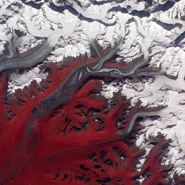 Description of . Susitna Glacier, United States Folds in the lower reaches of valley glaciers can be caused by powerful surges of tributary ice streams. Susitna Glacier in the Alaska Range, seen in this Terra image from 2009, displays this phenomenon. Vegetation appears in shades of red and snow is white. The glacier�s surface is marbled with dirt-free blue ice and debris-coated brown ice. Infusions of relatively clean ice push in from tributaries in the north. The glacier surface appears especially complex near the center of the image, where a tributary has pushed the ice in the main glacier slightly southward. Steep cliffs and slopes exist in the glacier surface, with most of the jumble the result of surges in tributary glaciers. Glacial surges can occur when meltwater accumulates at the base of a tributary and lubricates the flow. The underlying bedrock can also contribute to glacier surges, with soft, easily deformed rock leading to more frequent surges.   NASA