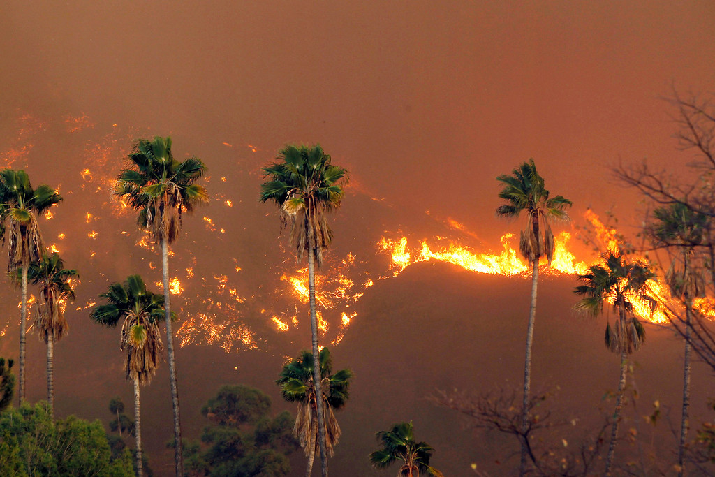 Description of . A wildfire burns in the hills just north of the San Gabriel Valley community of Glendora, Calif. on Thursday, Jan 16, 2014. (AP Photo/Nick Ut)