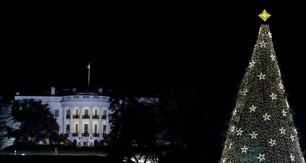 Description of . With the White House in the background, the National Christmas Tree is lit during the lighting ceremony on the Ellipse, Thursday, Dec. 6, 2012 in Washington. (AP Photo/Alex Brandon)
