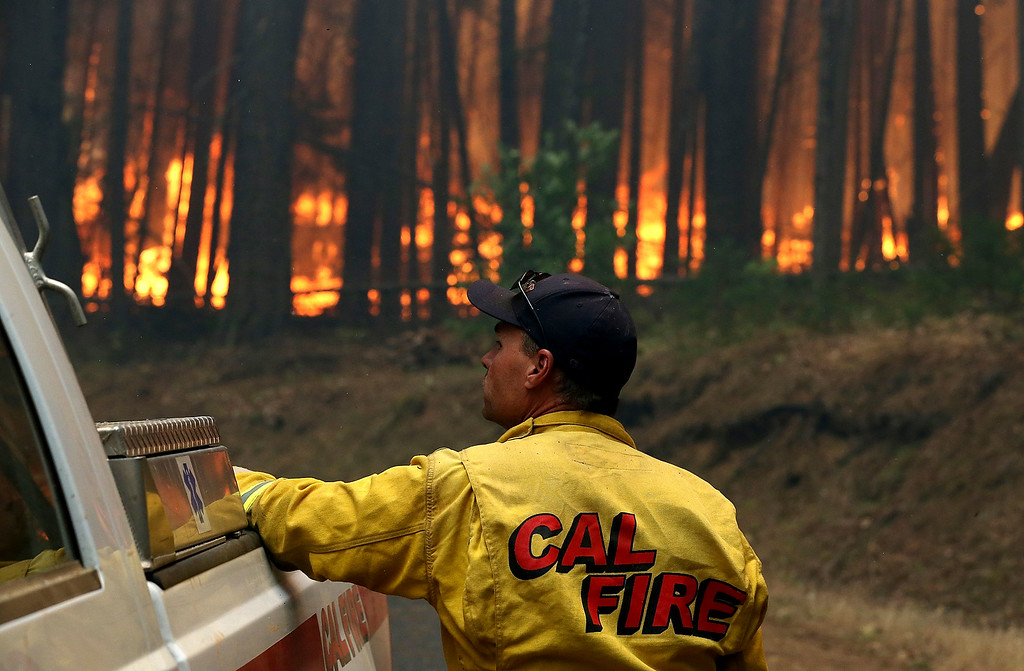 Description of . A Cal Fire firefighter looks on as the Rim Fire burns through a grove of trees on August 25, 2013 near Groveland, California. The Rim Fire continues to burn out of control and threatens 4,500 homes outside of Yosemite National Park. Over 2,000 firefighters are battling the blaze that has entered a section of Yosemite National Park and is currently 7 percent contained.  (Photo by Justin Sullivan/Getty Images)