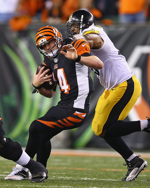 Description of . Andy Dalton #14 of the Cincinnati Bengals runs with the ball dwhile defended by LaMarr Woodley #56 of the Pittsburgh Steelers during the game at Paul Brown Stadium on September 16, 2013 in Cincinnati, Ohio.  (Photo by Andy Lyons/Getty Images)