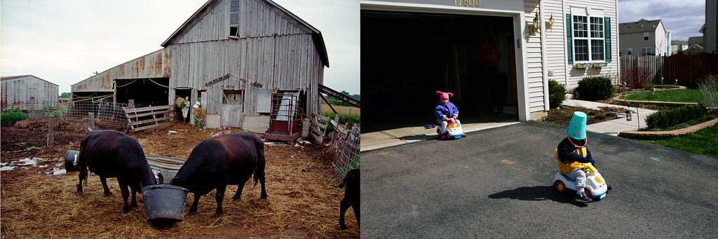 Description of . Bucket up once meant feed for eager Cagwin cattle. Now bucket down means a goofy helmet for a Cinnamon Court driveway Grand Prix. Photos by Scott Strazzante.