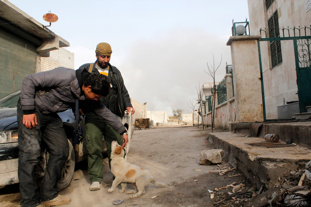 Description of . Members of the Free Syrian Army play with a dog near Nairab military airport in Aleppo February 23, 2013. REUTERS/Hamid Khatib