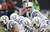 Andrew Luck #12 of the Indianapolis Colts calls out the play at the line of scrimmage against the Houston Texans in the first half at Reliant Stadium on December 16, 2012 in Houston, Texas.  (Photo by Bob Levey/Getty Images)