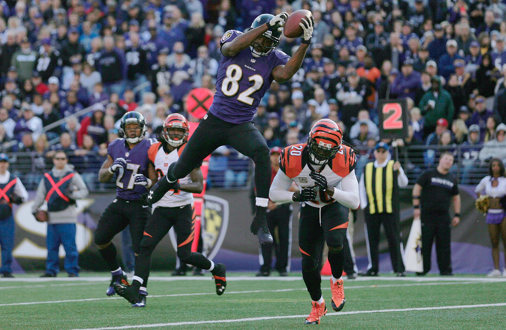 Description of . Wide receiver Torrey Smith #82 of the Baltimore Ravens catches a second quarter touchdown pass in front of free safety Reggie Nelson #20 of the Cincinnati Bengals  at M&T Bank Stadium on November 10, 2013 in Baltimore, Maryland.  (Photo by Rob Carr/Getty Images)