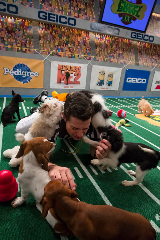 Description of . Referee calls nap time during Puppy Bowl IX(Photo credit: Animal Planet)