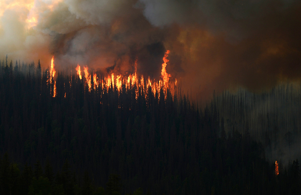 . Fire shoots from the trees at the Papoose Fire, June 26, 2013. The wildfire in southwestern Colorado has consumed more than 80 thousand acres, and continues to have potential for growth. (Photo By RJ Sangosti/The Denver Post)
