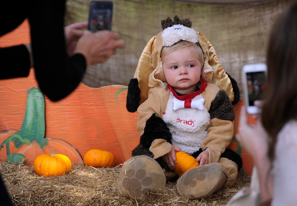 . DENVER, CO - Oct. 25: Families gather at the giant pumpkin to get photos of their trick-or-treaters. Mom Dana Erickson, right, and grandma Virginia Erickson have to move quickly to get their shot of 17-month-old Brady. The Children\'s Museum of Denver hosts its annual Trick or Treat Street with trick-or-treating from the various Treat Houses, train rides on Vern\'s Mini Train, Monster Carnival, arts and crafts, and more. The event runs both Saturday and Sunday from 10 a.m to 7 p.m. (Photo By Kathryn Scott Osler/The Denver Post)