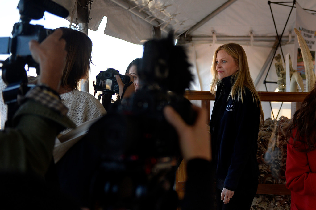 . Actress Kristin Bauer van Straten speaking toreporters before the US Fish and Wildlife service, at the direction of President Obama, crushed tons of ivory at the Rocky Mountain Arsenal Wildlife Refuge in effort to stymie the illegal taking of wildlife November 14, 2013 Commerce City, CO. (Photo By Joe Amon/The Denver Post)