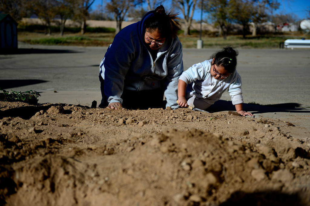 . Zarite McCray, 4 (right) and her mother, De Vonna McCray help dig a community garden at the Ute Mountain Ute reservation Head Start. The mother and daughter, along with a couple other parents, dug the garden and began planting various berries. The idea of the garden is to help teach good eating habits and personal responsibility by way of cultivating their own food to be eaten in the school\'s cafeteria. (Photo by AAron Ontiveroz/The Denver Post)