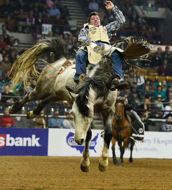 . DENVER, CO. - JANUARY 11:  Professional bareback rider, George Gillespie, from Elgin, Oregon, during the Colorado vs. The World Rodeo on opening day of the National Western Stock Show Saturday, January 10, 2014. (Photo By Andy Cross / The Denver Post)