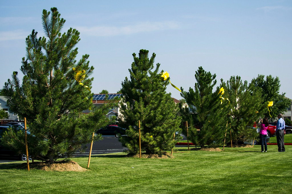. Caren Teves and Tom Teves stand in front of a tree with a ribbon bearing the name of their late son, Alex Teves, after the conclusion of a dedication ceremony for the newly planted trees at Hope Park at The Potter\'s House of Denver on Sunday, July 20, 2014 in Aurora, CO.  Each of the thirteen trees planted had a yellow ribbon with the name of a person who lost their life in the tragedy.  (Photo by Kent Nishimura/The Denver Post)