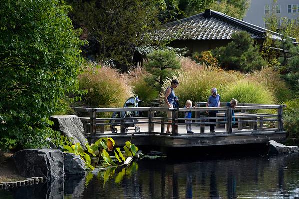 2015-09-24 Japanese Garden at Denver Botanic Gardens