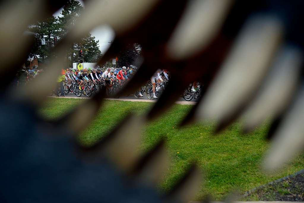 . WOODLAND PARK, CO - AUGUST 22: Riders make their way past the giant teeth of a daspletosaurus statue. The USA Pro Challenge stage 5 on Friday, August 22, 2014. (Photo by AAron Ontiveroz/The Denver Post)