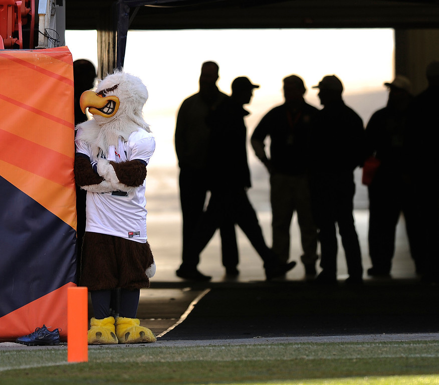 . The Eagles\' mascot looked like it might be hunting prey before the game. The Valor Christian football team took on Fairview in the 5A championship game Saturday, November 30, 2013. Photo By Karl Gehring/The Denver Post