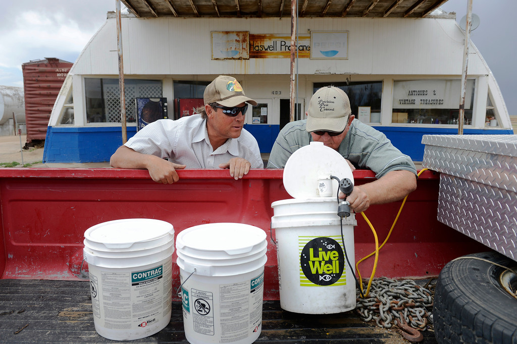 . HASWELL, CO - MAY 29:  Paul Stoker, left, and his friend and fishing buddy, Scott Briggs, look over live fish bait, minnows, in the back of Brigg\'s truck outside of Stoker\'s store, the Haswell Propane and Fuel company in Haswell Colorado, Wednesday May 29, 2013. Stoker\'s family business serves multiple purposes including propane and gasoline sales, but also as the town gathering place. (Photo By Andy Cross/The Denver Post)