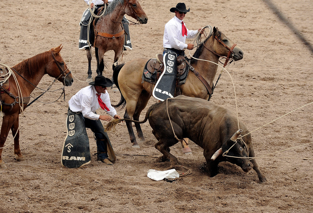 . CHEYENNE, WY - JULY 20: Pickup men attempt to get a bull to exit the arena after he bucked off a rider during the Cheyenne Frontier Days rodeo on July 20, 2013, in Cheyenne, Wyoming. (Photo by Anya Semenoff/The Denver Post)