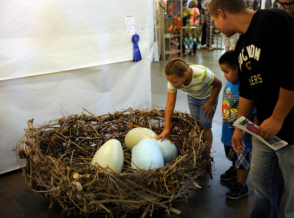 . DENVER, CO. - AUGUST 10: Meriah Bilbrey, age 9, took a closer look at a sculpture by artist Tom Novosad that won a blue ribbon at the Denver County Fair Saturday afternoon, August 10, 2013. Photo By Karl Gehring/The Denver Post