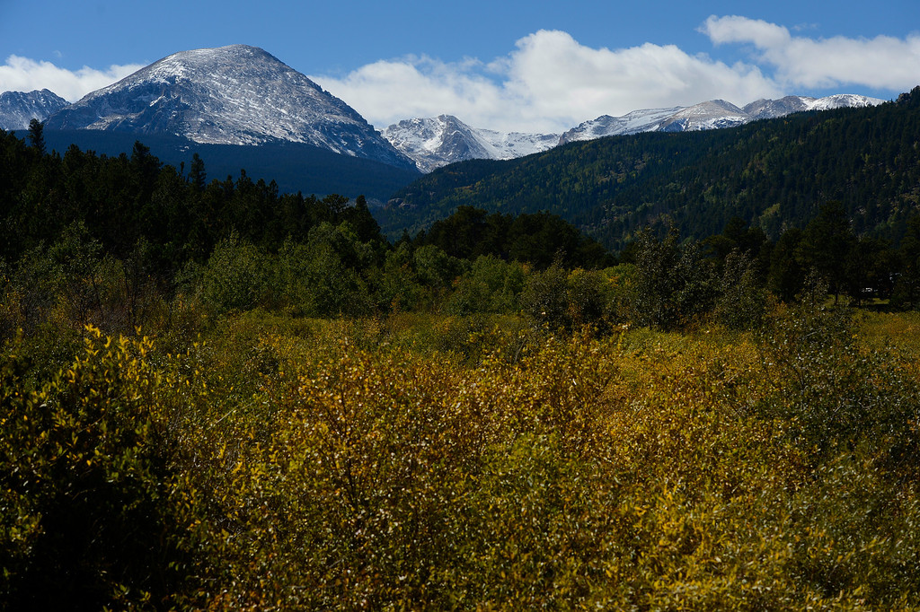 . ALLENSPARK, CO - SEPTEMBER 28: Fall colors underneath mountain peaks along highway 7 near the N. St. Vrain Creek Saturday morning, September 28, 2103. (Photo By Andy Cross/The Denver Post)
