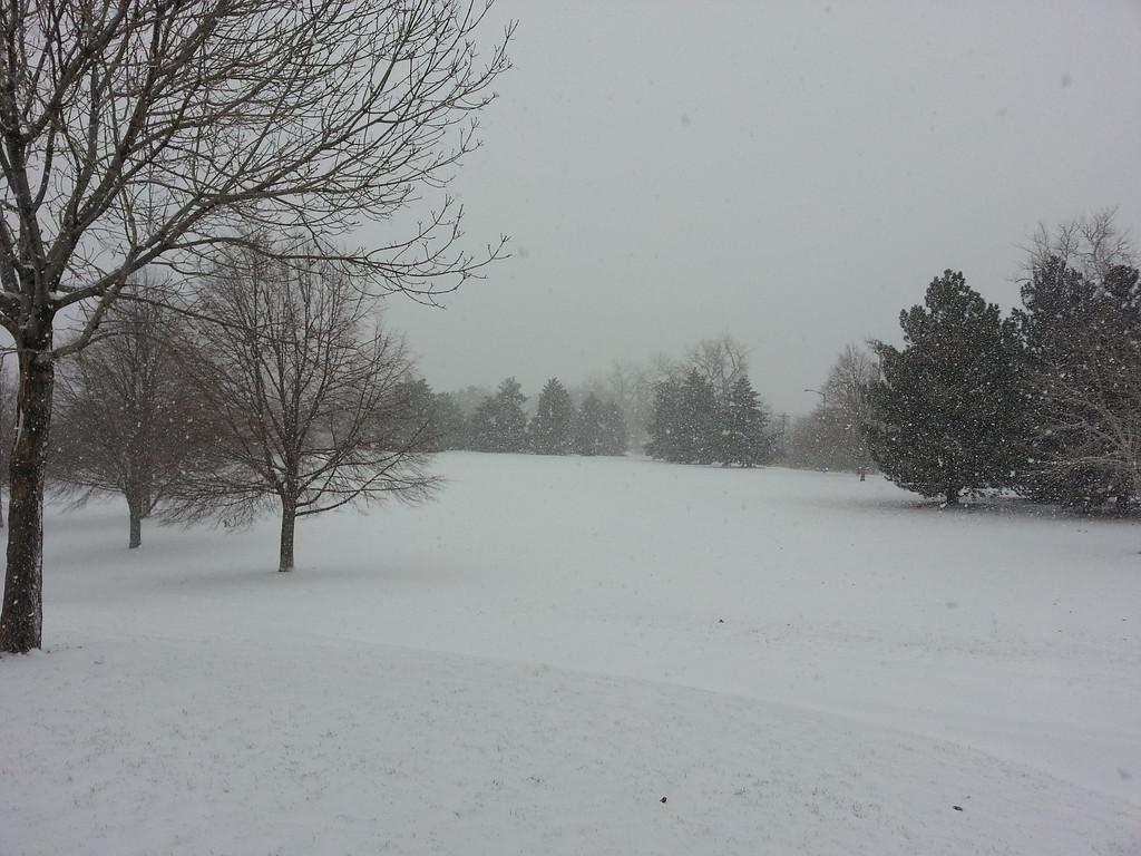 . Loretto Heights Park, Southwest Denver, December 4, 2013. Chuck Plunkett, The Denver Post