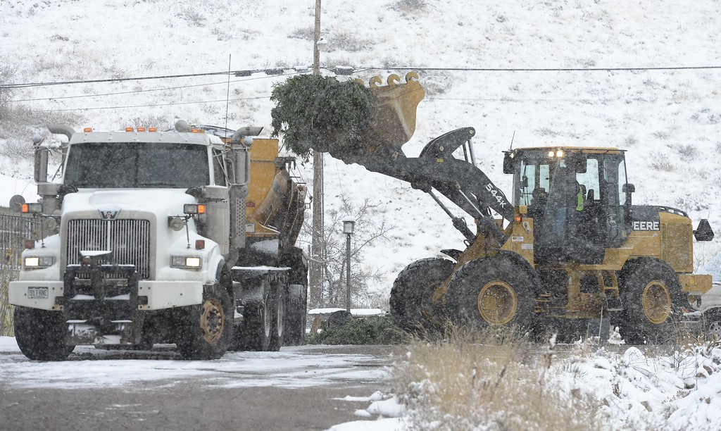 . A front loader dumps several hundred pounds of medical marijuana seized during a raid at Swiss Medical into the back of a large truck in Boulder, Colorado November 21, 2013. BOULDER DAILY CAMERA / Mark Leffingwell