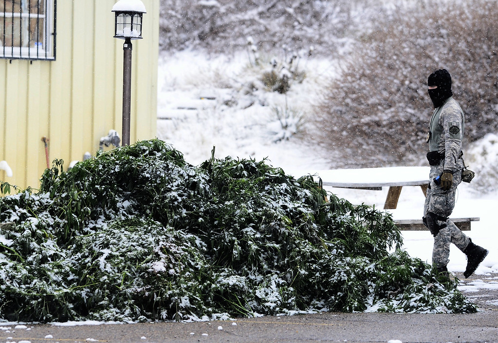 . A law enforcement officer walks past a pile of marijuana seized during a raid at Swiss Medical in Boulder, Colorado November 21, 2013. BOULDER DAILY CAMERA / Mark Leffingwell