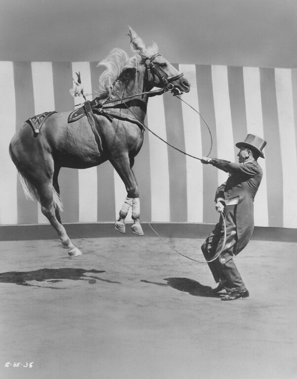 . AUG 10 1958  Trainer Charlie Moroski puts one of his horses through its paces in an outstanding act of the Ringling Bros. Barnum and Bailey Circus, due at the Denver coliseum Aug. 28. The May-D&F ticket office for the circus opens Monday. (Denver Post digital archive photo)
