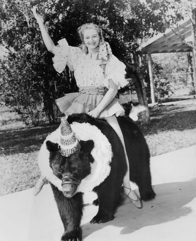 . JUL 27 1961 - Lucky Brandy - Yes, Brandy is the big Russian brown bear so considerately giving a ride to his pretty mistress Herta Klauser, as a tuneup for their performance with Ringling Bros and Barnum 4 Bailey Circus. (Denver Post digital archive photo)