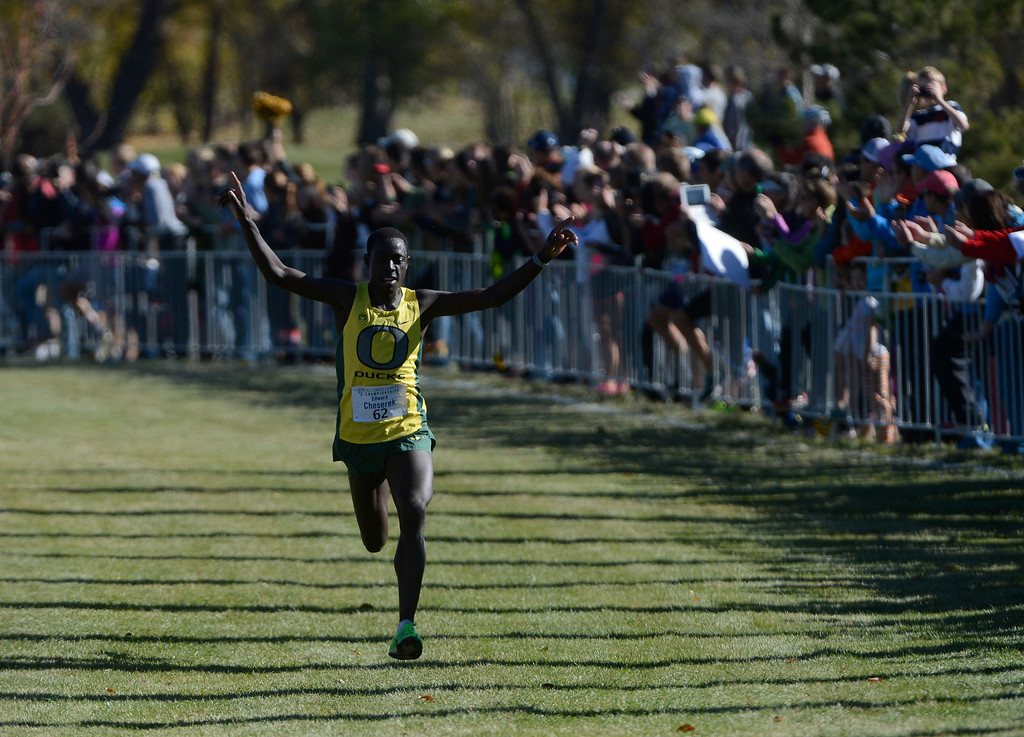 . LOUISVILLE, CO - NOVEMBER 02: Oregon University runner, Edward Cheserek, celebrates his huge lead moments before crossing the finish line in first place to win the Pac 12 Cross Country Championships at the Coal Creek Golf Course Saturday morning, November 02, 2013. (Photo By Andy Cross/The Denver Post)