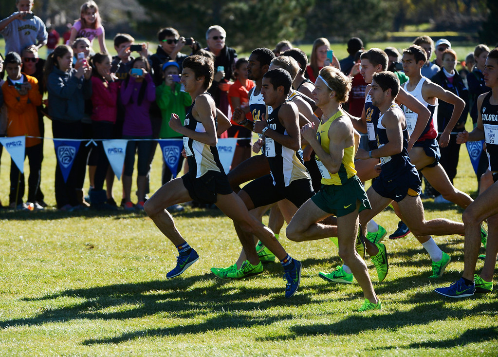 . LOUISVILLE, CO - NOVEMBER 02: Colorado University runner, Blake Theroux, left, leads a host of other runners at the start of the Pac 12 Cross Country Championships at the Coal Creek Golf Course Saturday morning, November 02, 2013. Theroux took 3rd place but, the CU men won the overall championship. (Photo By Andy Cross/The Denver Post)